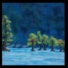 Bald Cypress Trees  Pastel, 2015