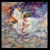 Cali the Country Cat Pastel, 2014