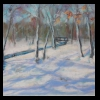 Winter at Lincoln Memorial Gardens  Pastel, 2015